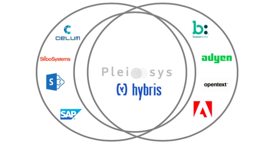 Integration – SAP Cloud Enablement for Digital Subscription